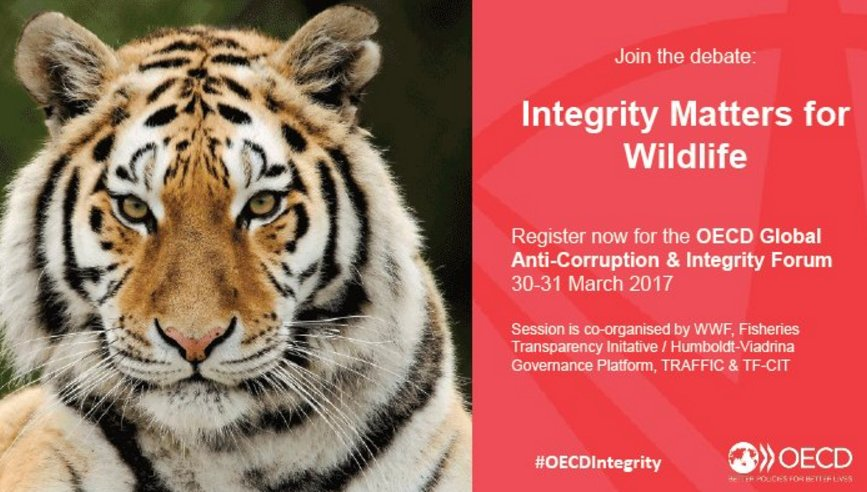 C6B0 hgWYAAcNuV - Fisheries Transparency Initiative (FiTI) ist offizieller Knowledge Partner des OECD Global Anti-Corruption and Integrity Forum 2017