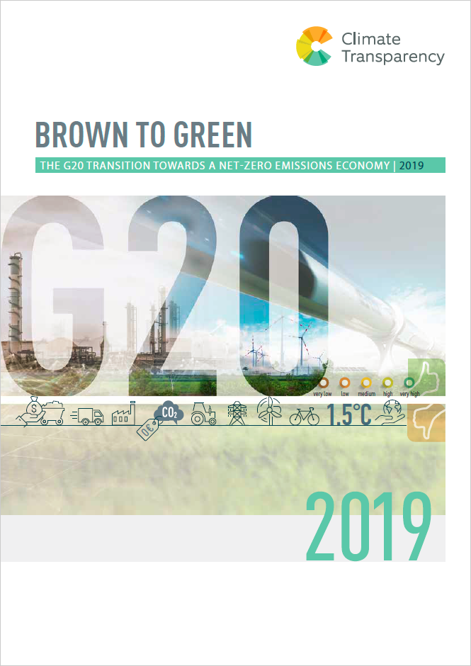B2G Report 2019 Cover Page - Brown to Green Report 2019: The G20 transition towards a net-zero emissions economy