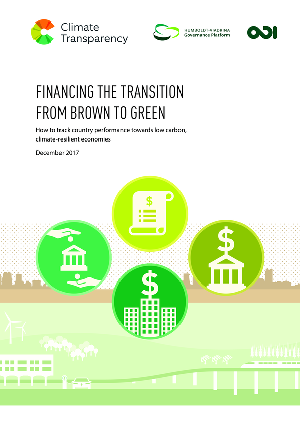 Paper release: Financing the transition from brown to green